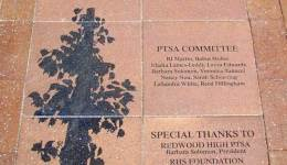 Redwood High School PTSA Committee